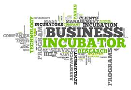 French ministry launch business incubator